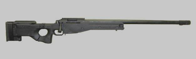6.5X47 Lapua Tactical Rifle